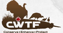 CWTF logo